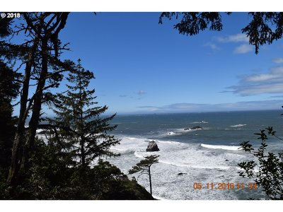 Gold Beach Residential Lots & Land For Sale: Chantrelle Ln