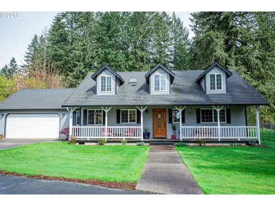 Battle Ground Single Family Home For Sale: 24507 NE 146th Ave