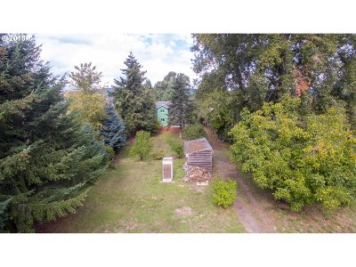 Woodland Single Family Home For Sale: 1874 Lewis River Rd