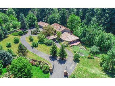 Ridgefield Single Family Home For Sale: 17507 NE 33rd Ave