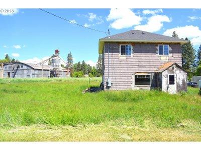 Elgin Single Family Home For Sale: 625 Detroit St