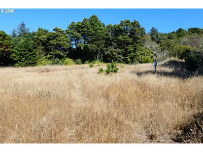 Gold Beach Residential Lots & Land For Sale: 33241 Ophir Rd