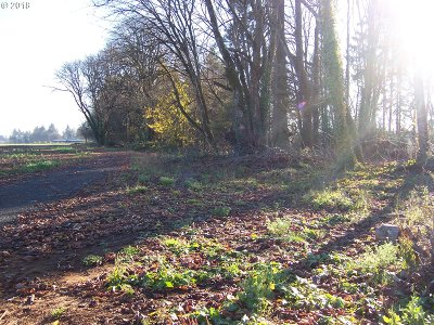 Newberg, Dundee, Mcminnville, Lafayette Residential Lots & Land For Sale: SE #3