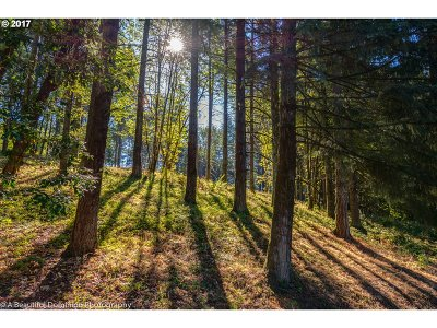 West Linn Residential Lots & Land For Sale: 1423 S Kyle Pl
