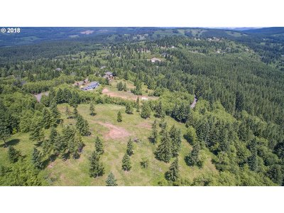 Camas Residential Lots & Land For Sale: NE 298th Ct