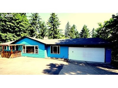 Tigard Single Family Home For Sale: 11925 SW Gaarde St