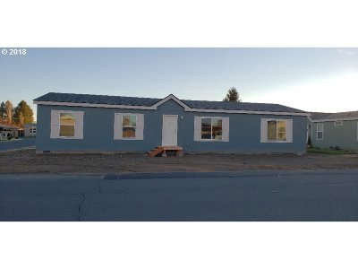 Hermiston Single Family Home For Sale: 1333 W Joseph St