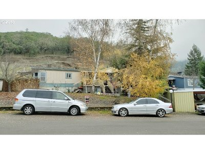 Roseburg Single Family Home For Sale: 169 Oscar Dr