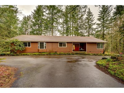 Newberg Single Family Home For Sale: 26415 SW Neill Rd