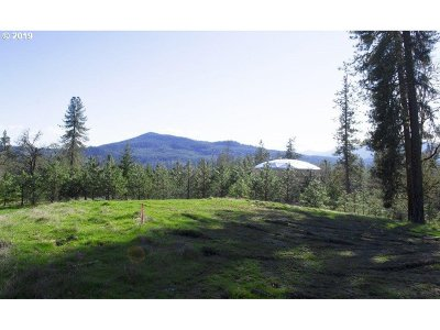 Roseburg Residential Lots & Land For Sale: Pitchstone Ct #23