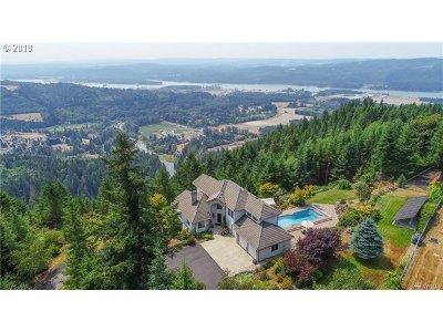 Cowlitz County Single Family Home For Sale: 126 E Raven Ridge Rd