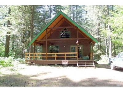 Skamania Single Family Home For Sale: 121 Northwoods
