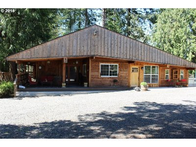 Sandy Single Family Home For Sale: 34905 SE Gunderson Rd