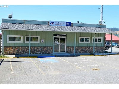 Gold Beach OR Commercial For Sale: $335,000