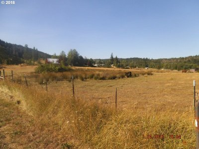 Roseburg Residential Lots & Land For Sale: 473 Orchard Ln