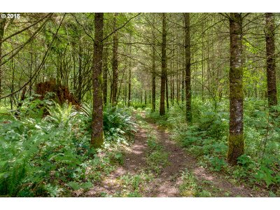 Sandy Residential Lots & Land For Sale: 59300 E Sleepy Hollow Dr