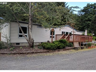 Cowlitz County Single Family Home For Sale: 248 Tybren Heights Rd