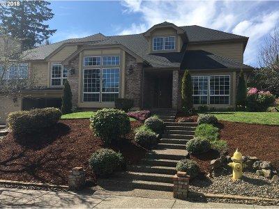 Salem Single Family Home For Sale: 4163 Sunray Ave S