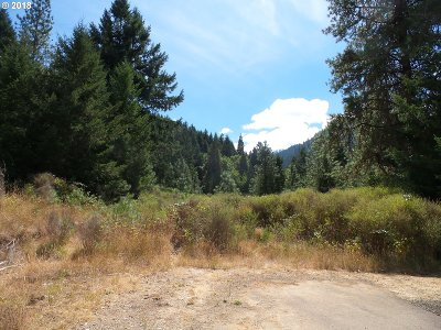 Canyonville Residential Lots & Land For Sale: 340 Kramer Dr
