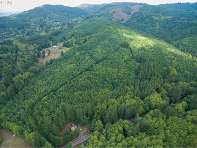 Cowlitz County Farm & Ranch For Sale: Little Kalama River Rd