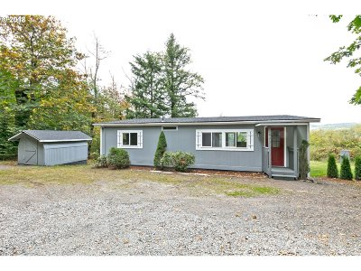 Washougal Single Family Home For Sale: 441 Matthews Rd