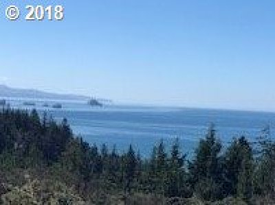 Port Orford OR Residential Lots & Land For Sale: $395,000