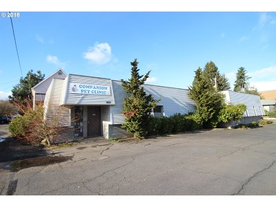 Portland Commercial For Sale: 7433 N Chicago Ave