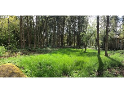 Lake Oswego Residential Lots & Land For Sale: 19376 Riverwood Ln #Lot 1