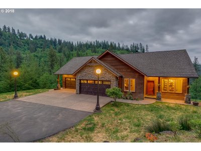Washougal Single Family Home For Sale: 34700 NE Paradise Rd
