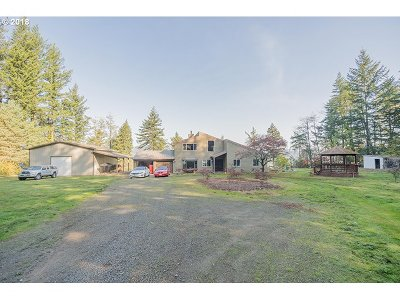 Washougal Single Family Home For Sale: 39028 SE 14th St