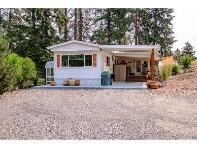 Lebanon Single Family Home For Sale: 38171 Golden Valley Dr