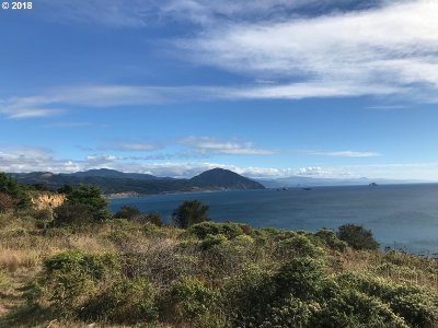 Port Orford Residential Lots & Land For Sale: 805 S King St