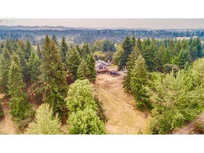Molalla Single Family Home For Sale: 35212 S Summit Ln