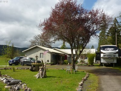 Roseburg Single Family Home For Sale: 271 Coos Bay Wagon Rd