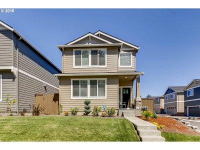 Hillsboro Single Family Home For Sale: 3772 SE Willamette Ave