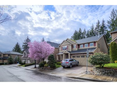 Washougal Single Family Home For Sale: 2759 W 11th St