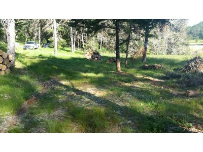 Roseburg Farm & Ranch For Sale: Krista Ln