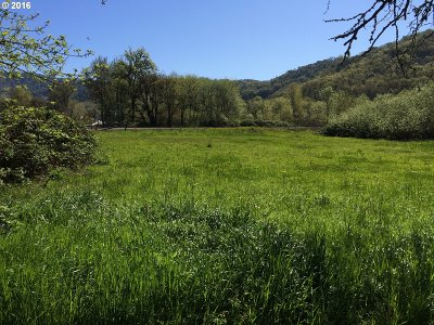 Roseburg Residential Lots & Land For Sale: 410 Speedway Rd