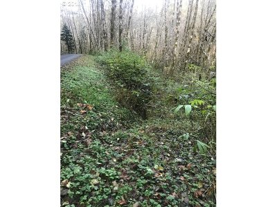 Florence Residential Lots & Land For Sale: Big Creek Rd