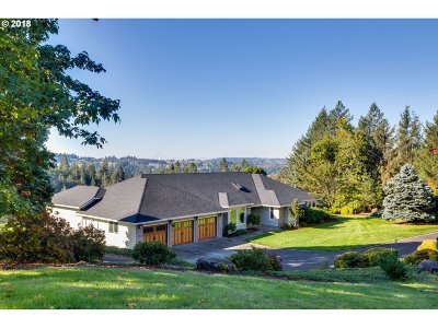 Washougal Single Family Home For Sale: 33207 SE 6th St