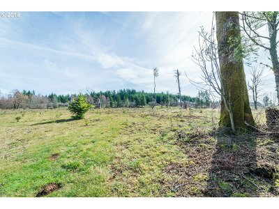 Residential Lots & Land For Sale: 40208 N NE Skye View Dr