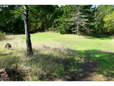 Gold Beach OR Residential Lots & Land For Sale: $165,000
