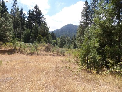 Canyonville Residential Lots & Land For Sale: 320 Kramer Dr