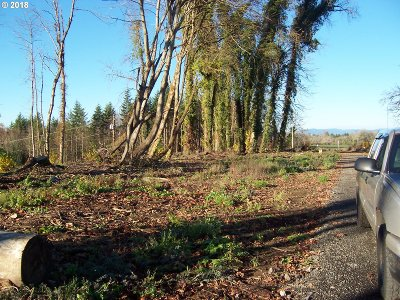 Newberg, Dundee, Mcminnville, Lafayette Residential Lots & Land For Sale: No Name