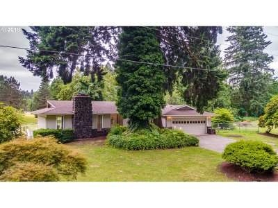 Woodland Single Family Home For Sale: 3235 Old Lewis River Rd