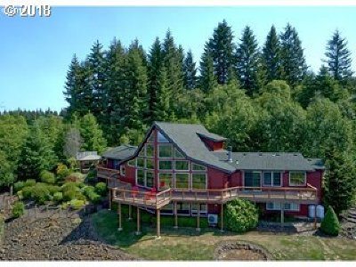Brush Prairie Single Family Home For Sale: 13703 NE 240th Ave