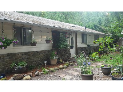 Sandy Single Family Home For Sale: 20425 SE Hummingbird Ln