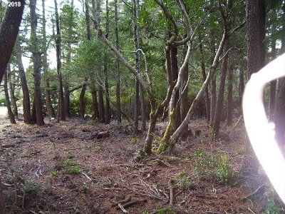 Bandon Residential Lots & Land For Sale: Madrone Dr
