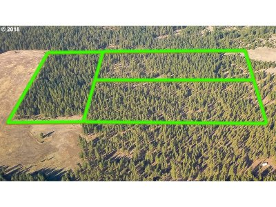 Goldendale, Lyle Residential Lots & Land For Sale: Browns Rd