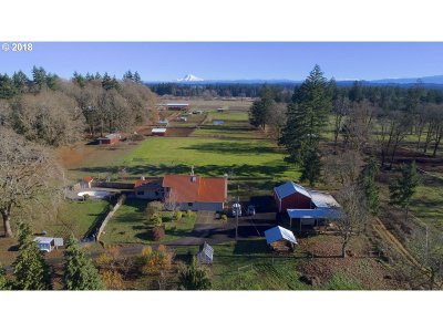 Clackamas County Single Family Home For Sale: 11592 S New Era Rd